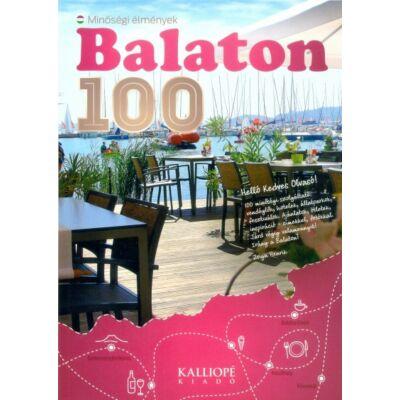 Zsiga Henrik - Balaton 100